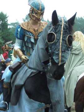 http://eliannevandorp.nl/files/gimgs/11_ridders-5.jpg